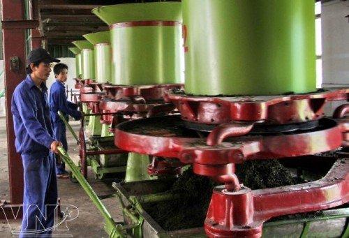 Nhà máy chè Sông Lô Tuyên Quang